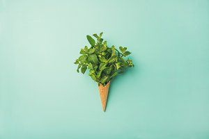 Waffle cone with fresh mint