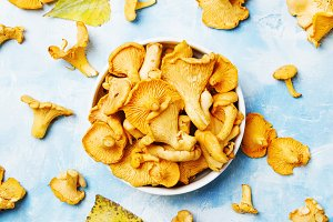 Fresh wild mushrooms chanterelles, b