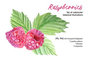 -50% Raspberry watercolor set