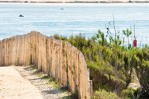 Wooden fence on Atlantic beach in Fr