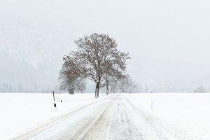 Winter scene in Alps