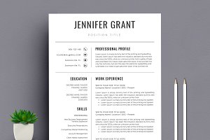 Modern Resume/CV Template Word