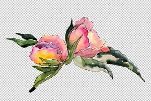 Delicate bouquets of flowers PNG set