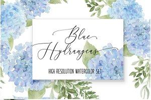 Hydrangea Watercolor florals