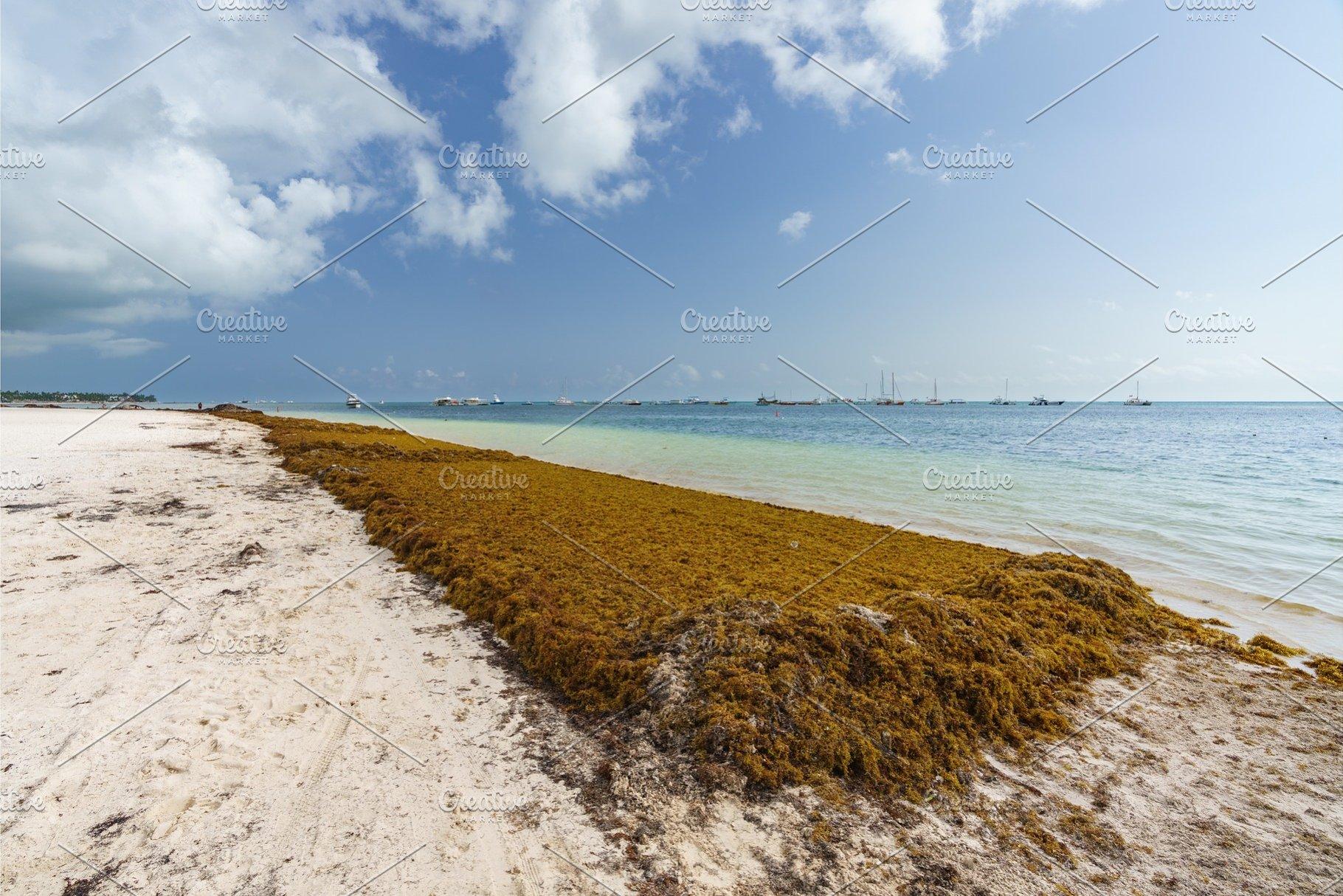 Punta Cana, Dominican Republic -