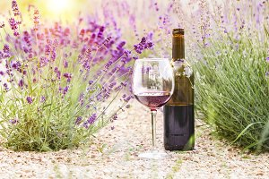 Wine over lavender field.