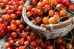 Fresh juicy cherry in a basket