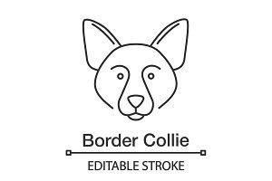Border collie linear icon