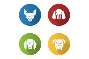 Dogs breeds icons set
