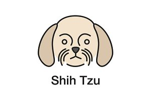 Shih Tzu color icon