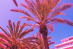 Pink surreal holidays