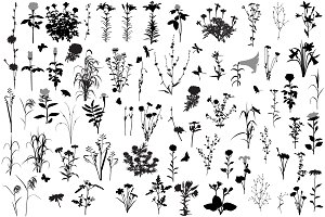 66 silhouettes of flowers and plants