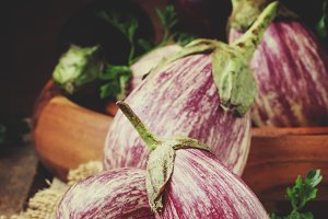 Fresh purple striped eggplants, rust