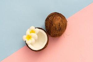 coconut fruit, minimal style