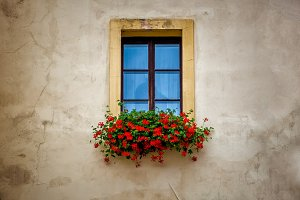 Old window frame with flower box