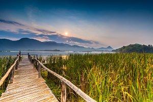 Bamboo bridge near reservoir