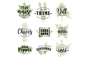 Spice or herb lettering with food