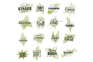 Spice and herb labels with lettering