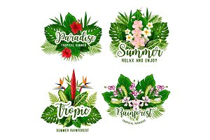 Tropical paradise for summer design