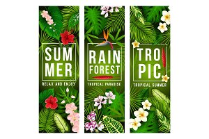 Tropical exotic summer flower banner