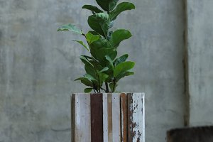 Wooden Planter with Greenery