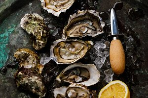 Open shucked fresh Oysters