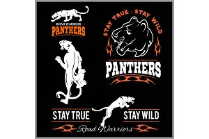 Panther Sport t-shirt graphics
