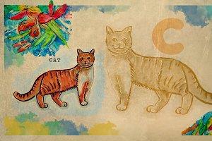 English alphabet , Cat