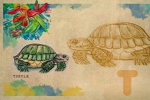 English alphabet , Turtle