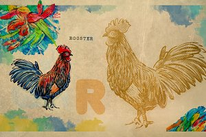 English alphabet , Rooster