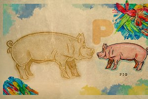 English alphabet , Pig