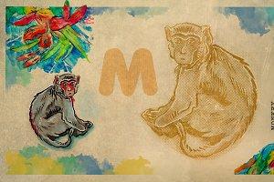 English alphabet , Monkey
