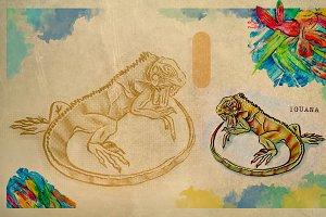 English alphabet , Iguana