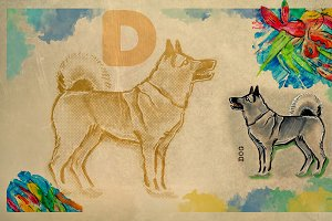 English alphabet , Dog