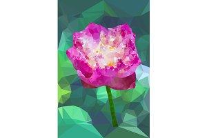 Vivid pink color polygonal lotus