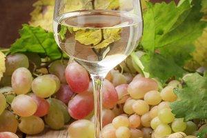Dry white wine in glass, still life