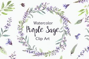 Watercolor Purple Sage Clip Art Set