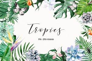 Summer tropics watercolor clip art