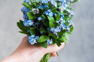 forget me not flowers in hand