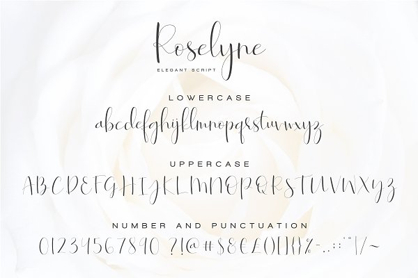 Best Roselyne - Caligraphy Script Vector
