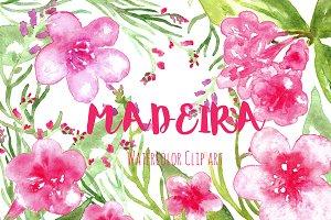 Madeira. Watercolor clip art.