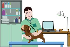 Animal Medical Care Concept