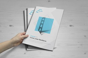 Business Brochure: 16 Pages