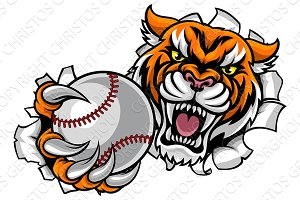 Tiger Holding Baseball Ball Breaking