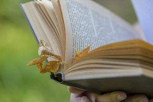 Vintage book with autumn leaf in