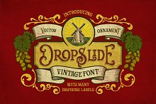 Dropslide Typeface by  in Display Fonts