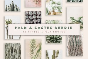 Palm & Cactus Bundle