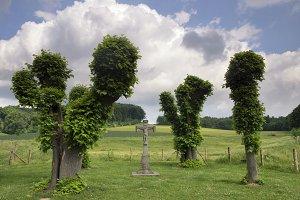 Wayside cross near Terborgh castle