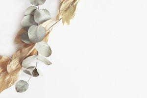 Botanical Styled Stock Photography