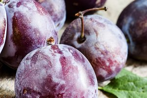 Large purple plum, selective focus